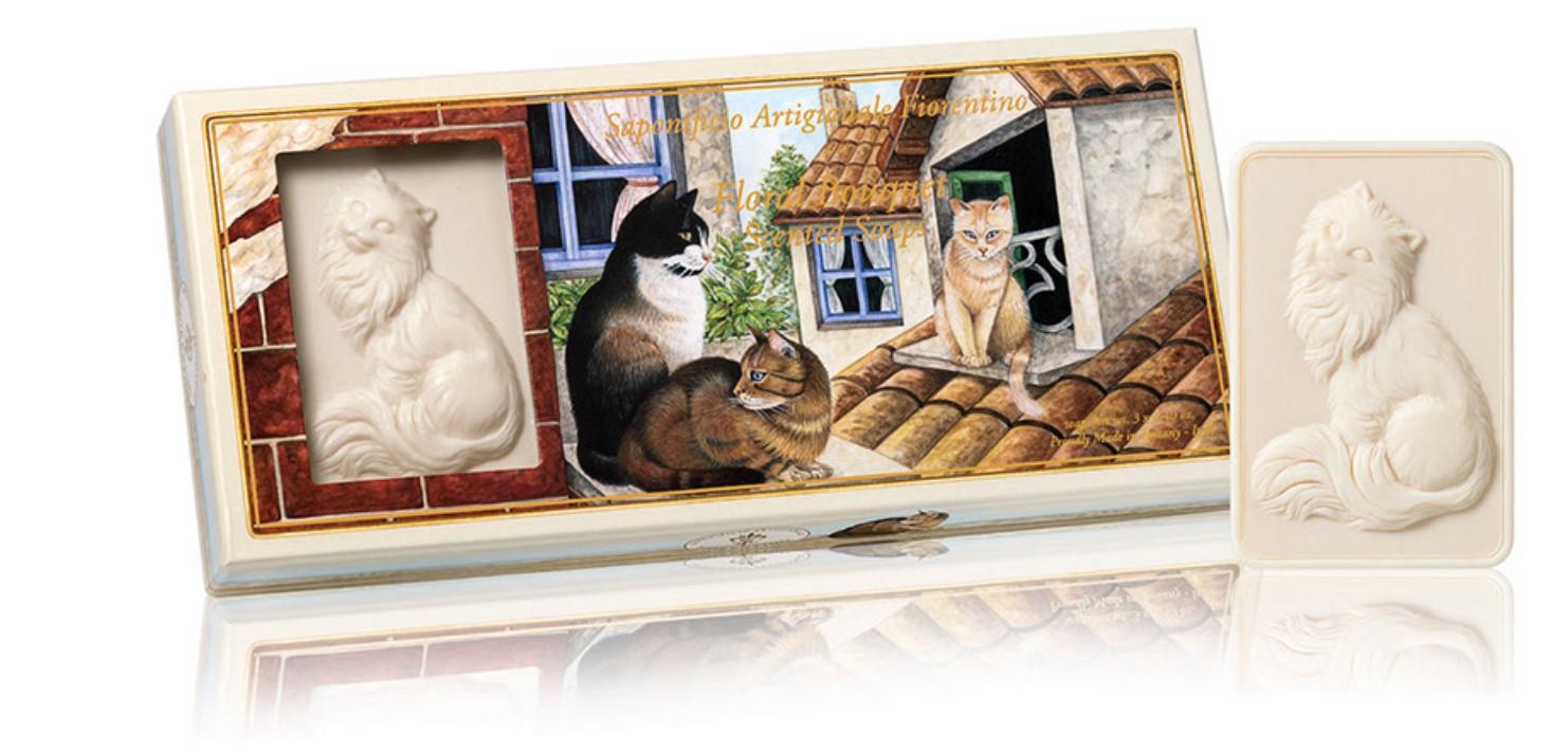 Katte 4